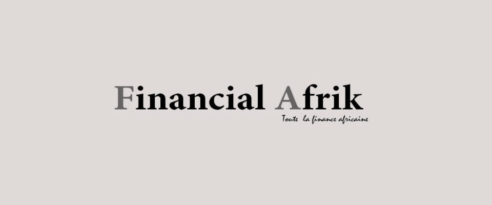 Interview in 'Financial Afrik'